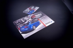 DSCF0423-ZF-8057-28251-1-003-copy